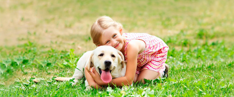 Niña abrazando a un perro en un campo