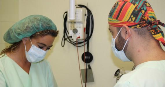 Clínica Veterinaria Villava Cirugía General