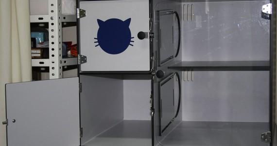 Clínica Veterinaria Villava Hospitalización para gatos
